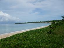 H.I.S.フィジー支店☆憧れの南太平洋ブラ Blog