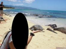 H.I.S. ホノルル支店 ☆ LeaLeaブログ                       ハワイのコネタ♪