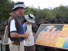 H.I.S.ケアンズ支店~トロピカル日和~-ふんふん火山噴火でできたのかこの島