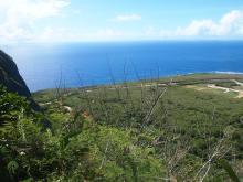 H.I.S.≫車いすで行く!バリアフリー旅行ハワイ、グァム、サイパン推進隊-SPNクリフ2