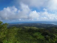 H.I.S.≫車いすで行く!バリアフリー旅行ハワイ、グァム、サイパン推進隊-SPNタポチョ2