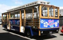 H.I.S.バリアフリー旅行 車いすで行く!バリアフリー旅行ハワイ、グァム、サイパン応援隊-TOROLY