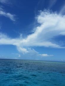 沖縄 美ら海ブログ