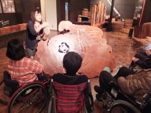 屋久島 車椅子