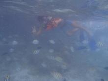 snorkeling3