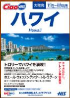 車いすで行く!バリアフリー旅行・ハワイ専門店|H.I.S.バリアフリー旅行専門デスク